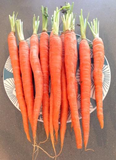 veronicas cornucopia blue ribbon carrot cake raw carrots